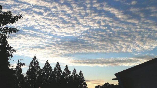 ナゾと推論2 長州の空は美しい